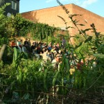 """Jardin du collectif """"le début des haricots"""""""